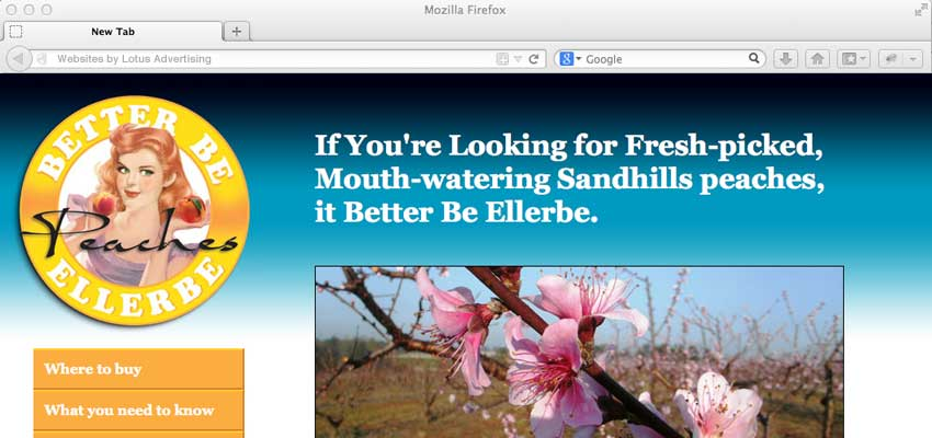 web page design for better be ellerbe peaches